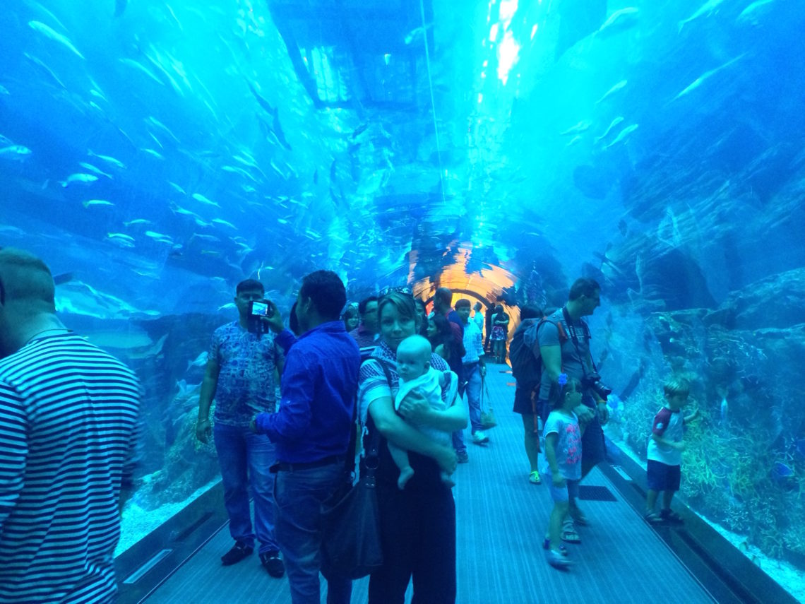 Dubai-aquarium-with-baby