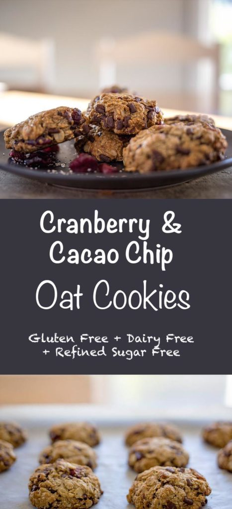 Cranberry and Caco Chip Oact Cookies - Gluten Free, Dairy Free and Refined Sugar Free