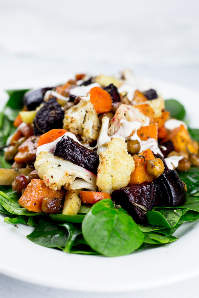 Close up of Roasted Vegetable Salad