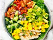 Birdseye view of chicken mango salad square photo