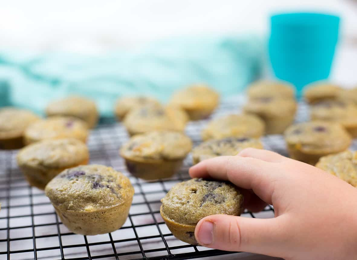 Mufifns on baking tray with toddlers hand reaching for one. Blue cup in background.