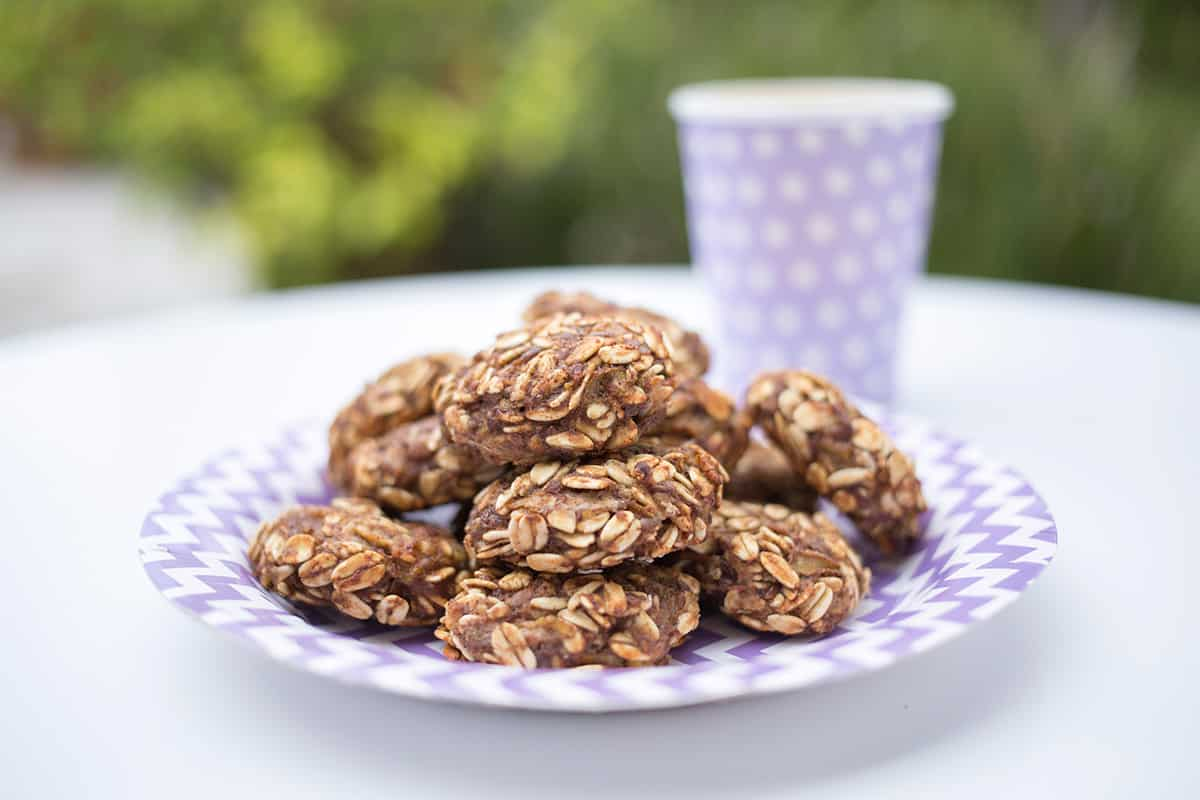 Toddler oat cookies on paper kids plate with cup in the background.